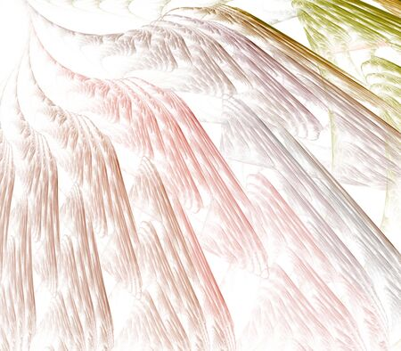 feathery: Pastel colorful, layered texture design  - fractal abstract background Stock Photo