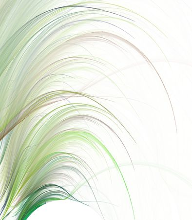 fringe: Abstract Background - Curling fringe design in natural green colors against white with copy space.