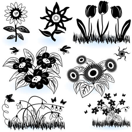 A collection of black and white different flower illustrations. Stock Vector - 9200035