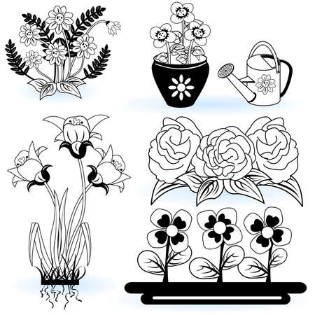 A collection of black and white different flower illustrations Stock Vector - 9200034