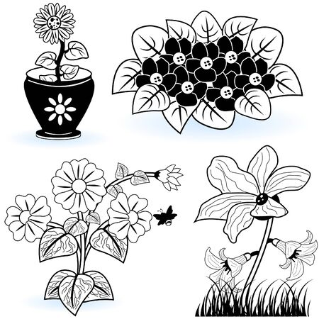 Collection of flowers Stock Vector - 9488215