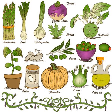 hand drawn vegetable set 5 Vector