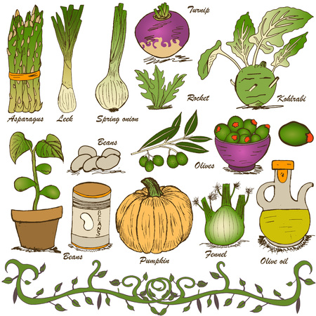 naturally: hand drawn vegetable set 5