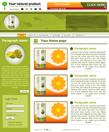 Website template design along with icons and images  Natural product food related  Vector
