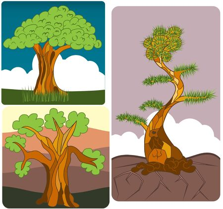 birch bark: vector illustration of three different trees along with their background.