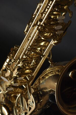 the tenor: My tenor saxophone in a good view.