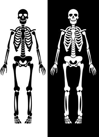 przerażający: szkielet czarno-biaÅ'e