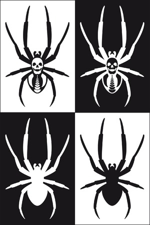spider black and white with deaths-head Vector
