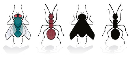 fly and ant isolated on white with his silhouette Illustration