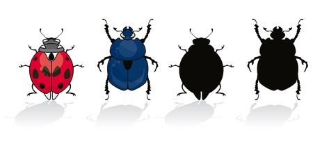 Ladybug and beetle isolated on white with his silhouette Illustration