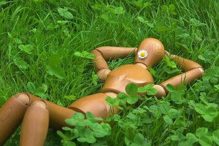 wooden dummy in the grass