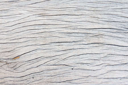 wood surface: surface of old wood wall texture background