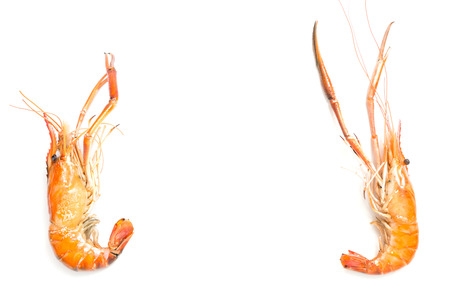 Grilled giant freshwater prawn isolated on white background 写真素材