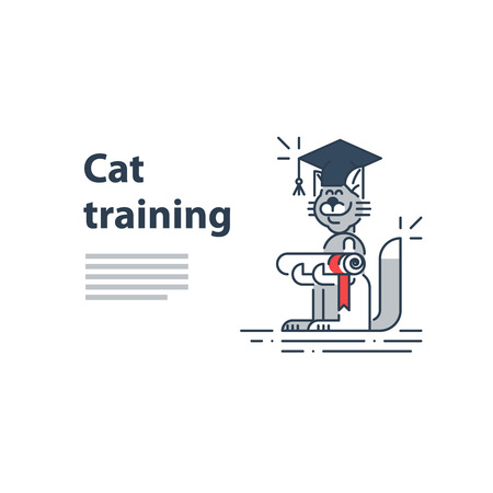 Can be used as a representation of any courses or university studies, and literally for cat training service. A certificate or invitation. Illustration