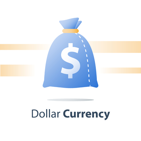 Money sack, dollar currency bag, fast loan, easy cash, financial fund, vector icon