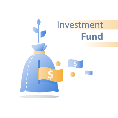 Financial invest fund, revenue increase, income growth, budget plan, return on investment, long term strategy, wealth management, more money, high interest, pension savings, superannuation concept Vetores