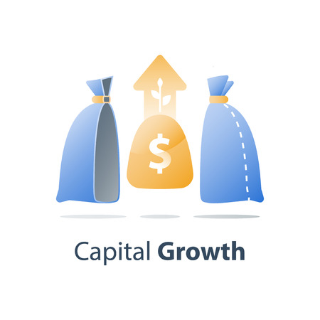 Invest fund solution, capital growth, wealth management, earn more money, long term investment strategy, pension savings account, superannuation concept, cash loan, vector icon
