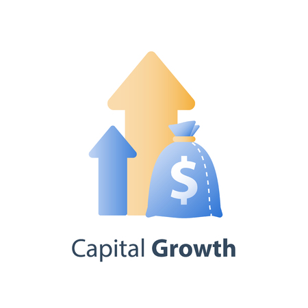 Long term investment strategy, financial value steady growth, asset allocation, stock market future income, revenue increase, mutual fund interest rate, more money saving, vector icon