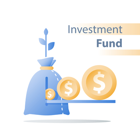 Financial invest fund, revenue increase, income growth, budget plan, return on investment, long term strategy, wealth management, more money, high interest, pension savings, superannuation concept Standard-Bild - 122318505