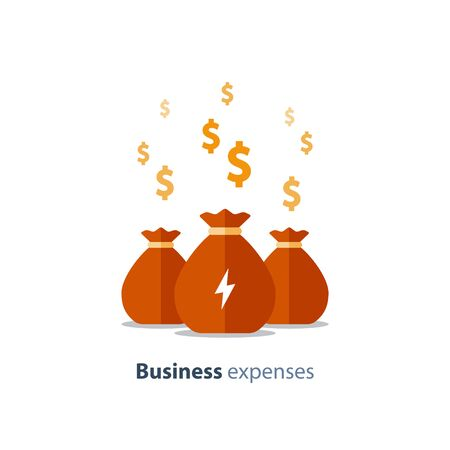 Fundraising campaign, business expenses, venture capital, asset evaluation, mutual fund, company dividends, vector icon, flat illustration