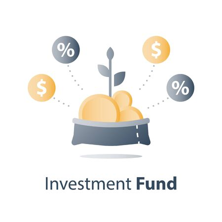 Mutual fund concept, financial portfolio, investment fund structure, consolidated finance, fund raising, pension savings account, budget plan, money growth, vector icon Ilustrace
