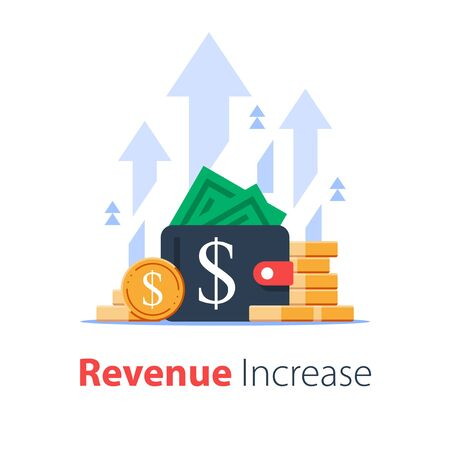 Wallet full of money, revenue increase, high interest rate, income growth, budget profit