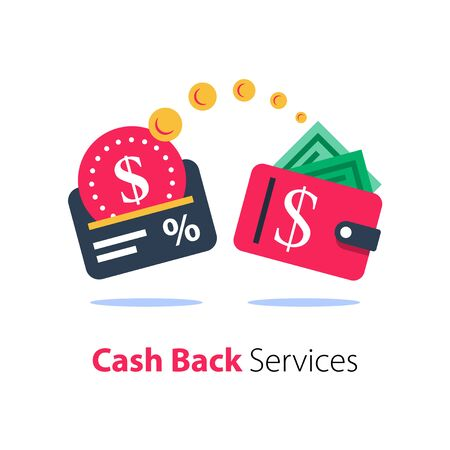 Cash back program, financial services, fast loan, credit card payment, wallet with money, wealth management, vector flat icon