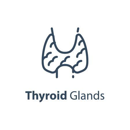 Human internal organ, thyroid glands concept, vector line icon, linear design illustration Illustration