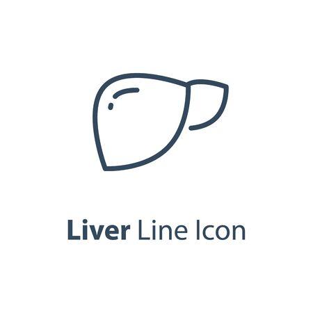 Human internal organ, healthy liver, vector line icon, linear design illustration