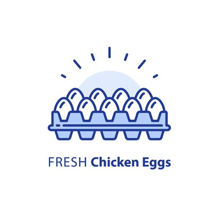 White chicken eggs in box, package of dozen, vector line illustration