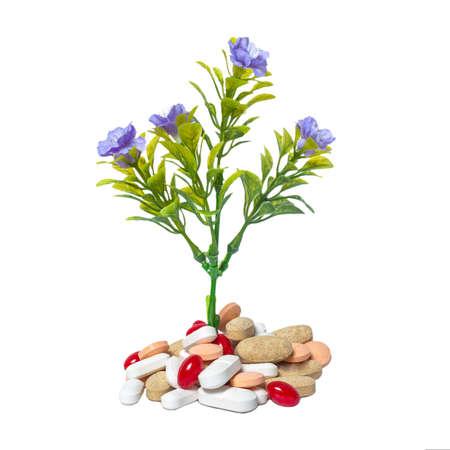 Pflanzen und Medizin Stockfoto - 18457578