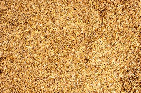 husk: Patr�n de la c�scara de arroz