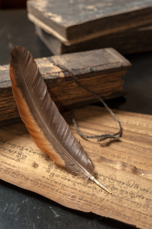 ancient bird: Ancient Treatise with bird feather