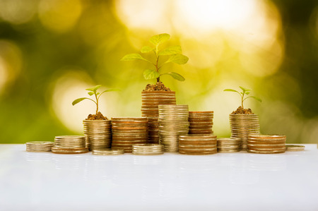 El crecimiento de la planta en la pila de monedas, conceptual de negocios Foto de archivo