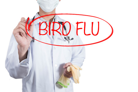 cold cure: Doctor using red pen draw circle on bird flu