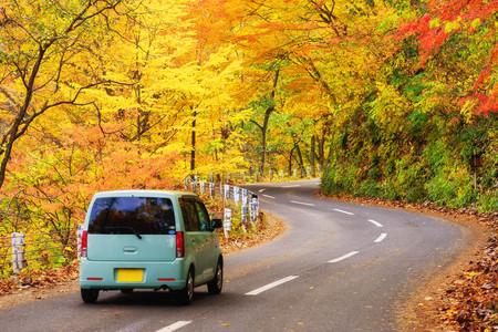 La scena delle auto percorre la strada con la foglia rossa autunnale di Aomori, in Giappone. Bella campagna lungo la strada, ottimo momento per viaggiare. Archivio Fotografico - 90712945