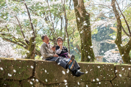 Couple of elderly travel in japan sit and having happy time during spring season in cherry blossom park Stock Photo