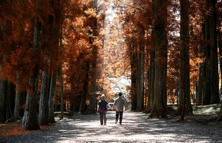 Elderly couple walk in park during fall season