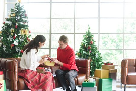 Russian couple prepare christmas gift at home while have wine in afternoon, woman ask man opinion about christmas present Zdjęcie Seryjne