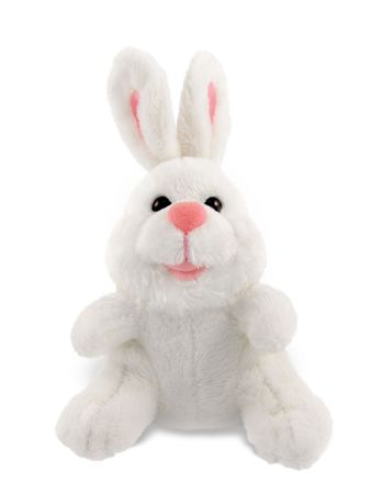 Studio shot of a isolated stuffed white bunny toy sitting over a white background