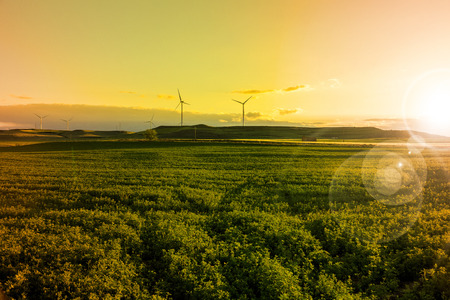 Electric wind turbines and green fields
