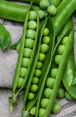 Green, tender, fresh and raw peas. Close-up and top view. Rustic appearance.