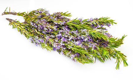 Bouquet of fresh rosemary and green with delicate purple flowers. Isolated on white background. Banco de Imagens - 122302371