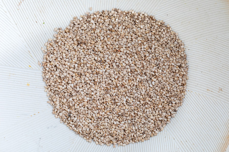 Close-up of sesame seeds in Suribachi (Japanese streak mortar).Top view. Banco de Imagens