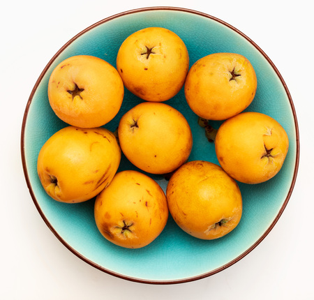 Fresh loquats (medlars) in blue turquoise bowl. Isolated on white background. Close-up.Top view.