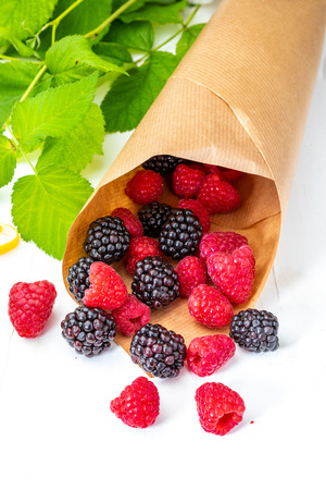 They look like artificial treats! But they are delicious and beautiful blackberries and fresh raspberries. Isolated on white background. Banco de Imagens