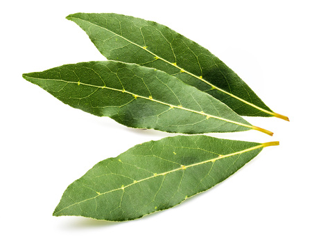 Fresh and dry bay leaves. With balls of black pepper. Isolated on white background.