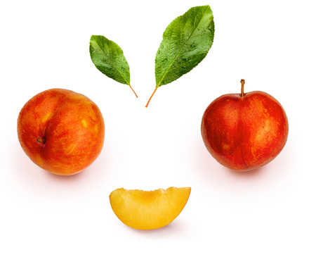 Yellow and orange plums (variety known as honey or mirabelle) isolated on white background. They include whole plums, segments and leaves. Color yellow, orange, orange. Healthy diet based on fruits (detoxification) due to its high fiber content. Banco de Imagens