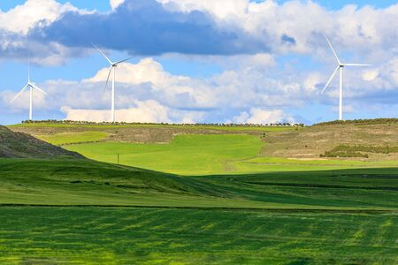 Wind turbines in day of blue sky, wind, clouds and green fields of wheat. Archivio Fotografico