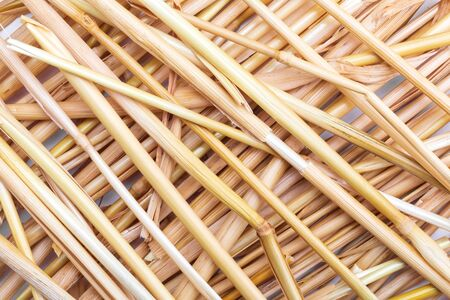 Straw texture (collection of vegetable and natural fibers). Foreground. Stockfoto